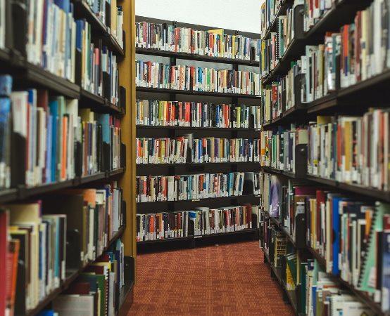 Biblioteka Elbląg: Malarstwo Kazimierza Brejnaka ponownie w Kostce